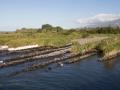Canaux de pêche du bichique, Ile de la Réunion