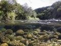 La rivière des marsouins, Ile de la Réunion