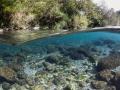 Rivière des Marsouins, Ile de la Réunion
