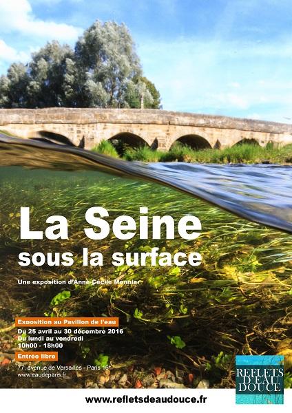 La Seine sous la Surface petit format